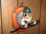 jeff's squirrel