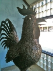 Cha's rooster