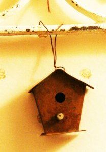 grand-birdy