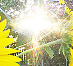 cross-of-the-sun