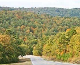 hillside
