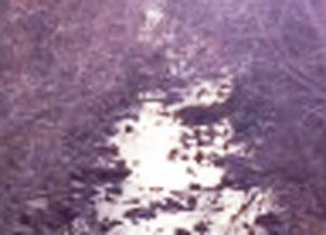 another-closeup