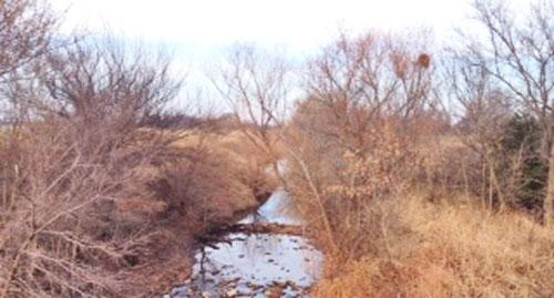 Damming the creek!